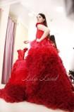 Комплект платьев  Роза , цвет красный градиент